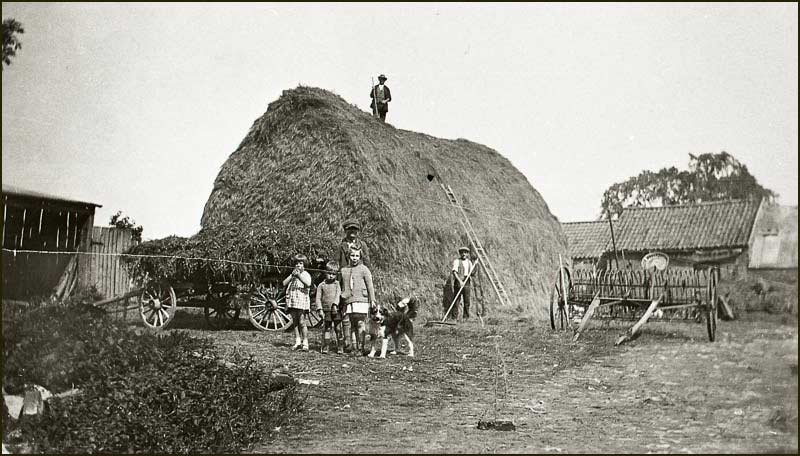 Knights finishing building haystack in Squires Farm stackyard